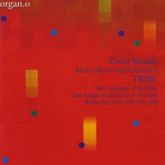 Tribe: Bach Organ Meditation 3 (2003)